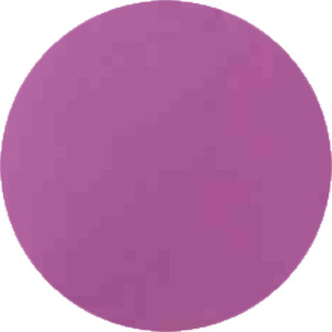 WP165